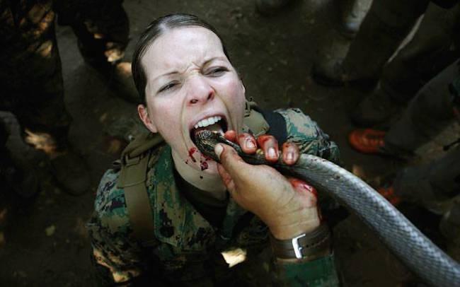 世界で最も残忍な軍事教練